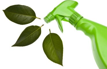 Green Cleaning - reliable cleaning services